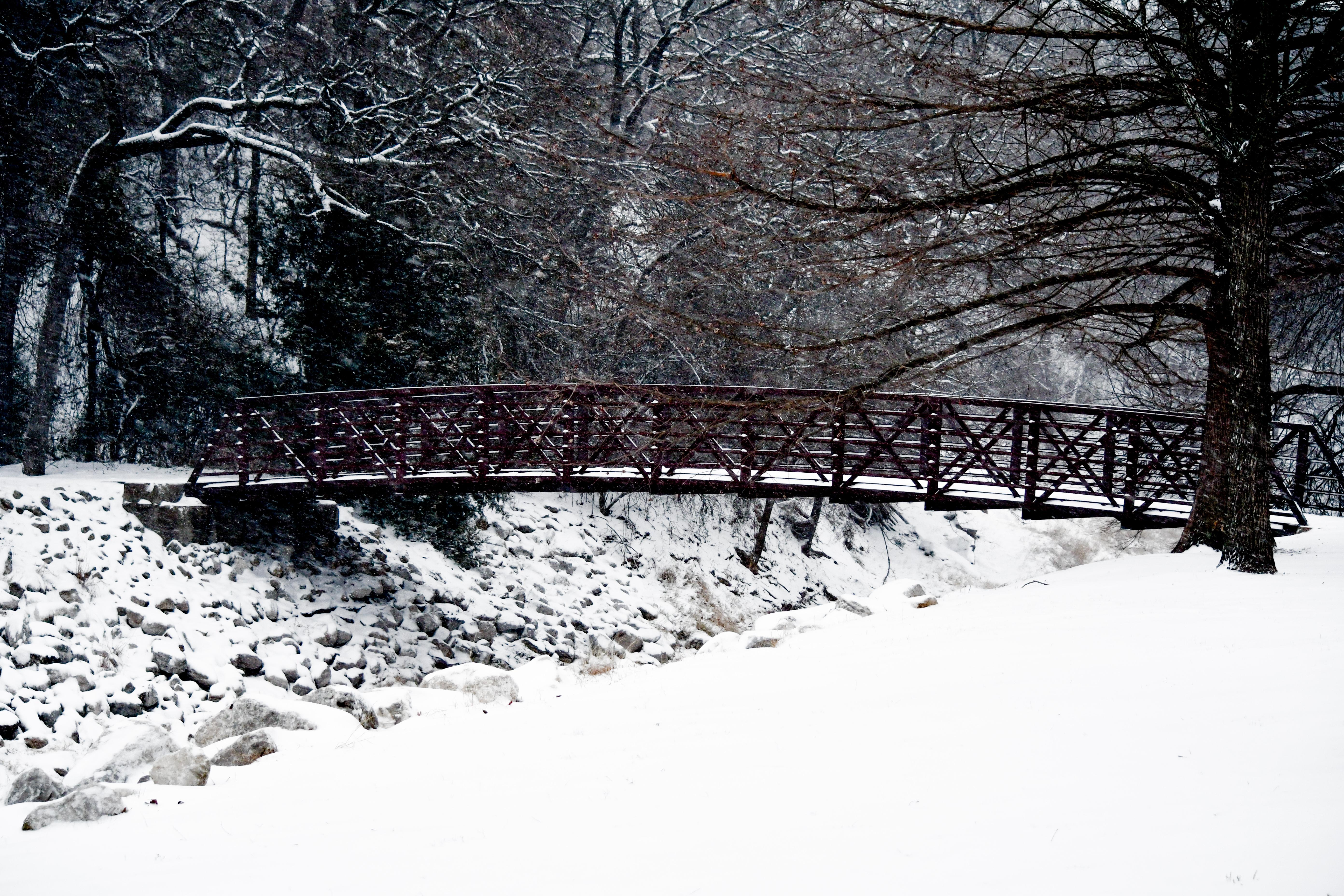 Snow Bridge in...Texas?!?