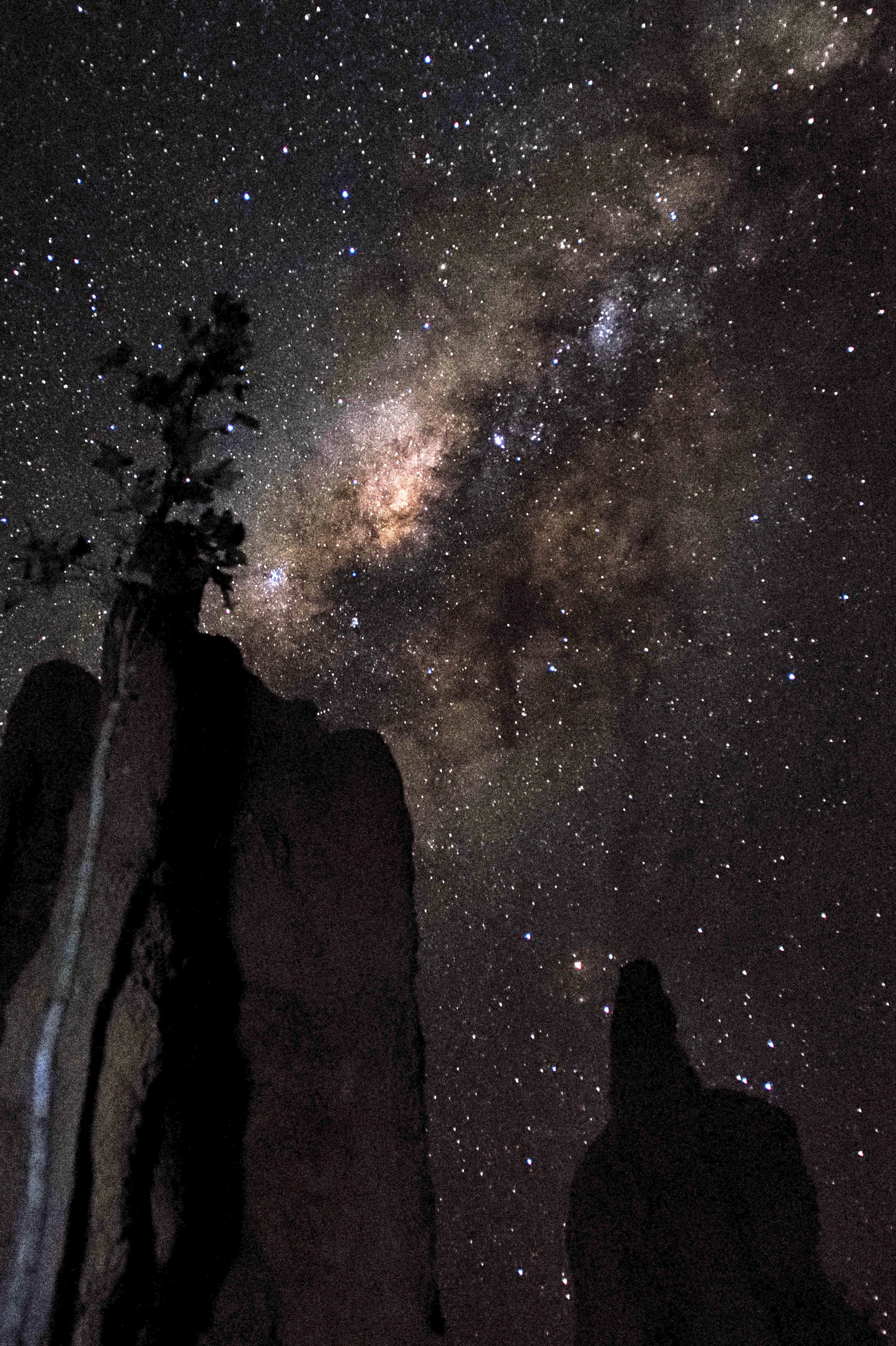 Milky Way over Termite Mounds